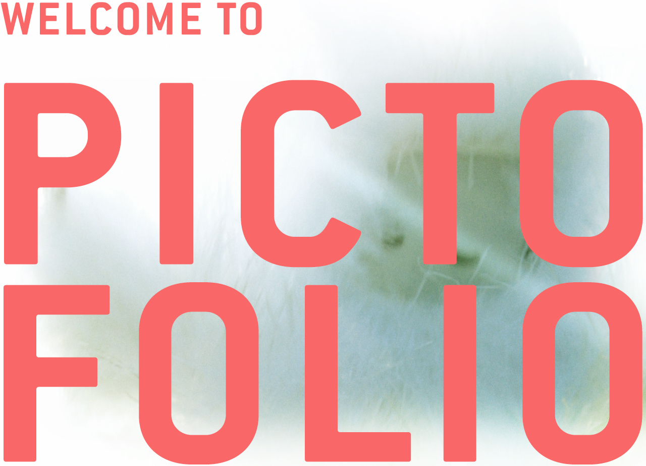 Welcome to Pictofolio